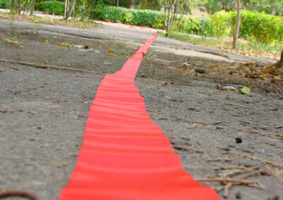 Ribbon Path Performance