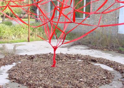 Ribbon tree