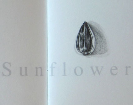SunflowerWriteup